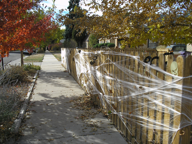 fake cobwebs on fence