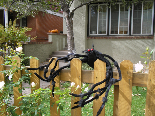 huge fake spider perched on fence