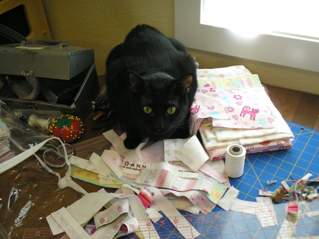 black cat in pile of fabric