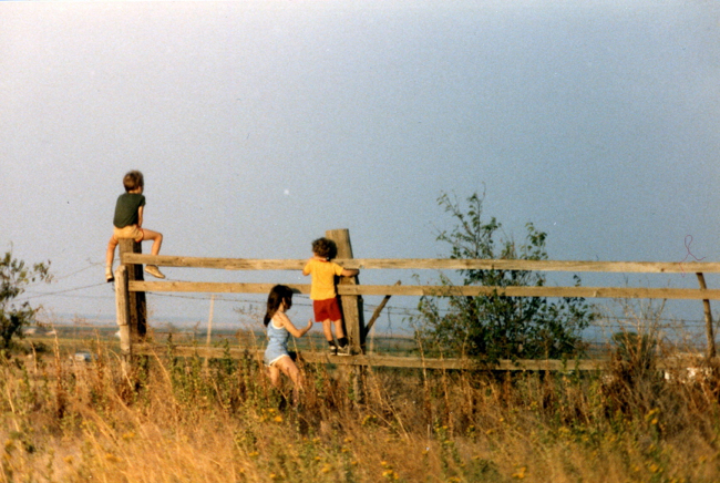 three kids on a wooden fence