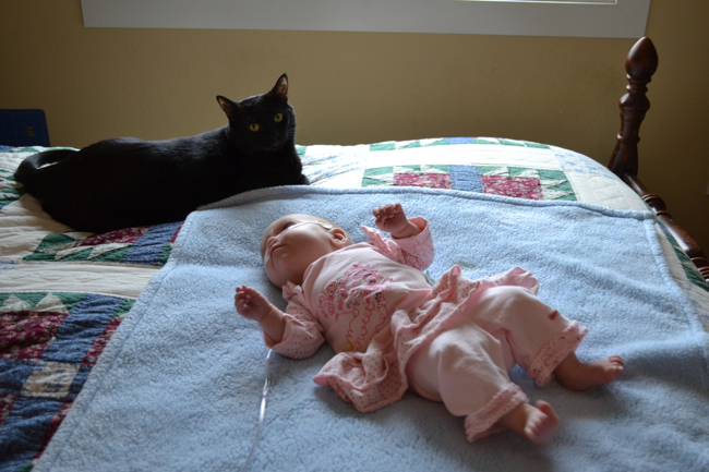 baby on bed with cat